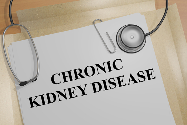 Folder with label chronic kidney disease